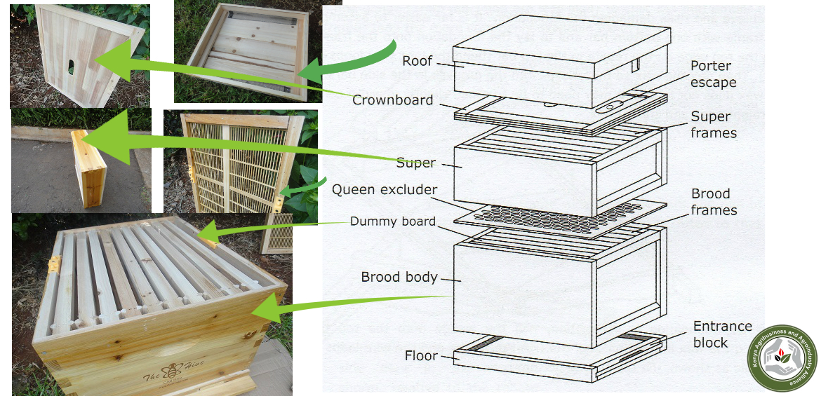 Modern bee farming how the cab hive works kaaa for Modern hive