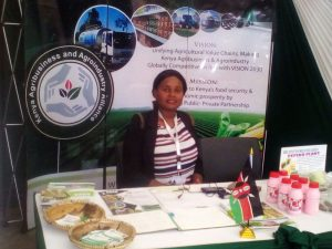 A KAAA stand at the HLM2